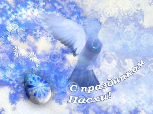 Летящий голубь картинка 6
