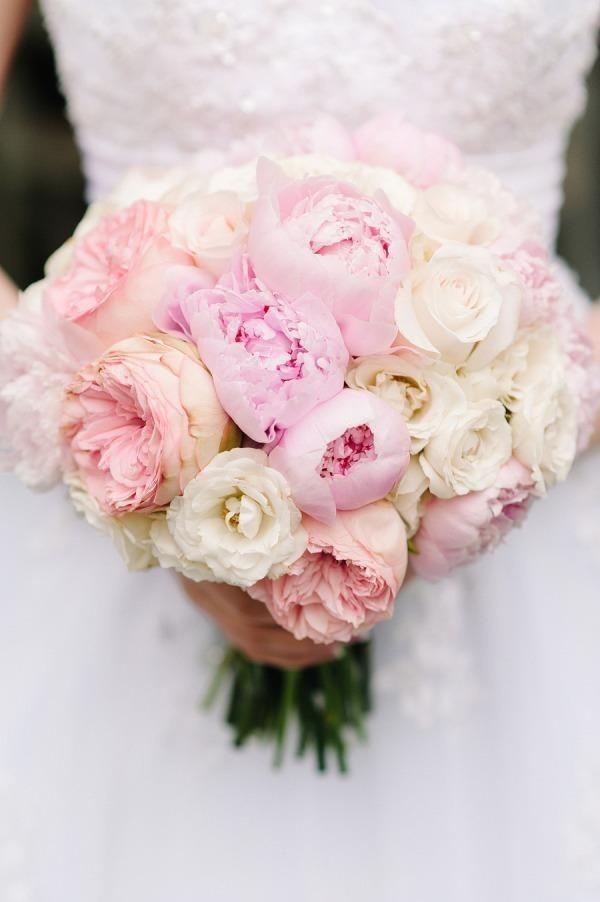 zvety_piony18