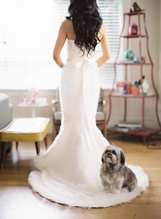Собака и невеста